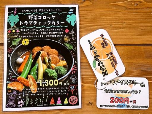 スープカリー SAMA 川沿店 | 店舗メニュー画像3